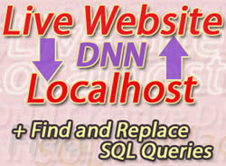Issue 22 – Transferring DotNetNuke installations localhost/live, SQL Find and Replace