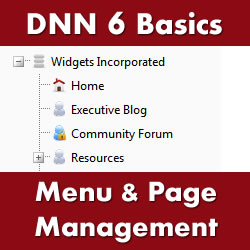 How to Build a Website with DotNetNuke 6